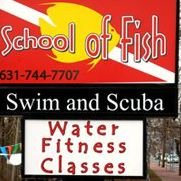 School of Fish Swim & Scuba