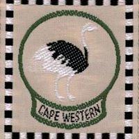 Western Cape Scouts