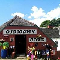 Curiosity Cove