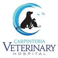 Carpinteria Veterinary Hospital