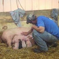 Recker Swine Farms