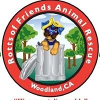 Rotts of Friends Animal Rescue