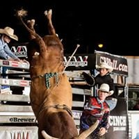 JC Knapp Rodeo Co./ Bucking Bulls and Horses