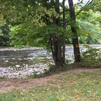 Beaverkill River Roscoe