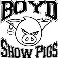 Boyd Show Pigs