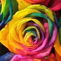 Florist Classes & Courses