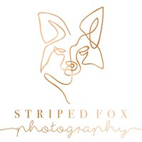 Striped Fox Photography