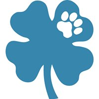Lucky Paws Boarding & Daycare