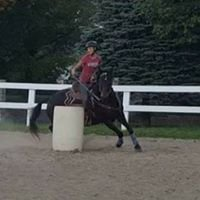 Little Lake Equestrian LLC