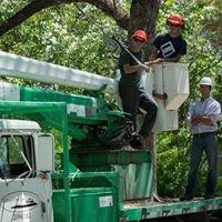 Gallatin Tree Care