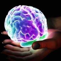 Long Island NeuroCare - Richard Pitch, MD