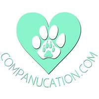 Companucation LLC Pet Sitting Dog Trainer.