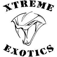 Xtreme Exotics