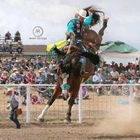 Pickett Pro Rodeo