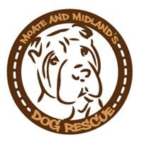 Moate and Midland's Dog Rescue