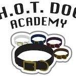 H.O.T Dog Academy