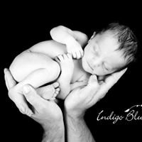 Indigo Blue Photography