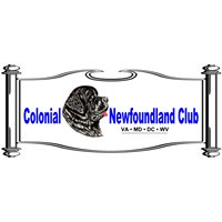 Colonial Newfoundland Club and Rescue