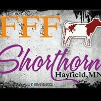 FFF Shorthorns