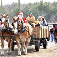 Hemphill's Horses, Feed, and Saddlery, Inc.