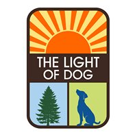 The Light Of Dog