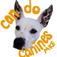Can Do Canines - Milwaukee