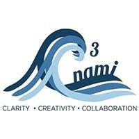 C3Nami, LLC
