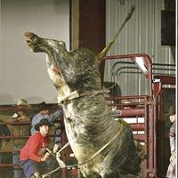Juma Rodeo Stock