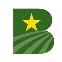 Bramlett Implement, Inc.