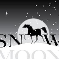 Snow Moon Arabians