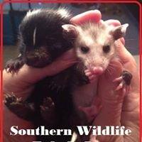Southern Wildlife Rehab
