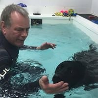 Wirral Canine Hydrotherapy Centre Ltd