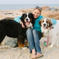 Cape Cod Dog Camp