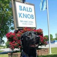 Bald Knob Animal Shelter