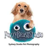 Fuzzy Beast Studio