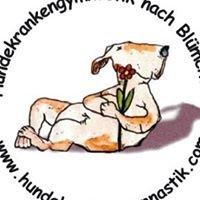 Ausbildungsstätte für Hundephysiotherapie