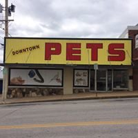 Downtown Pets