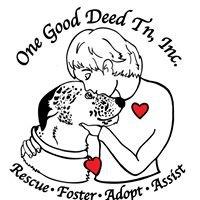 One Good Deed TN, Inc.
