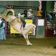 Rafter H Rodeo Company