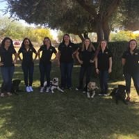 Sparky's Service Dogs at ASU