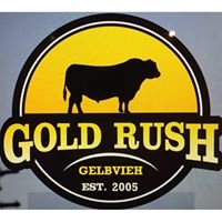 Gold Rush Gelbvieh & Composites