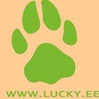 Ida-Virumaa Koerasõprade Klubi LUCKY