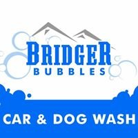 Bridger Bubbles Car And Dog Wash