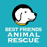 Best Friends Animal Rescue Inc