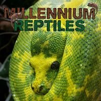 Millennium Reptiles & Exotics
