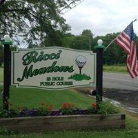 Ricci Meadows Golf Course
