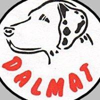 Dalmat - Hotel dla zwierząt, szkolenie psów