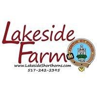 Lakeside Shorthorns