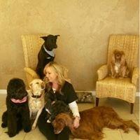 Mia & Company Pet Salon