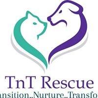 TnT Small Animal Rescue